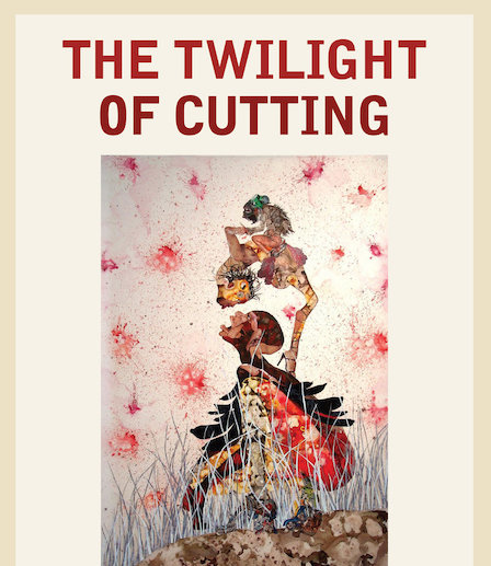 Book cover for The Twilight of Cutting